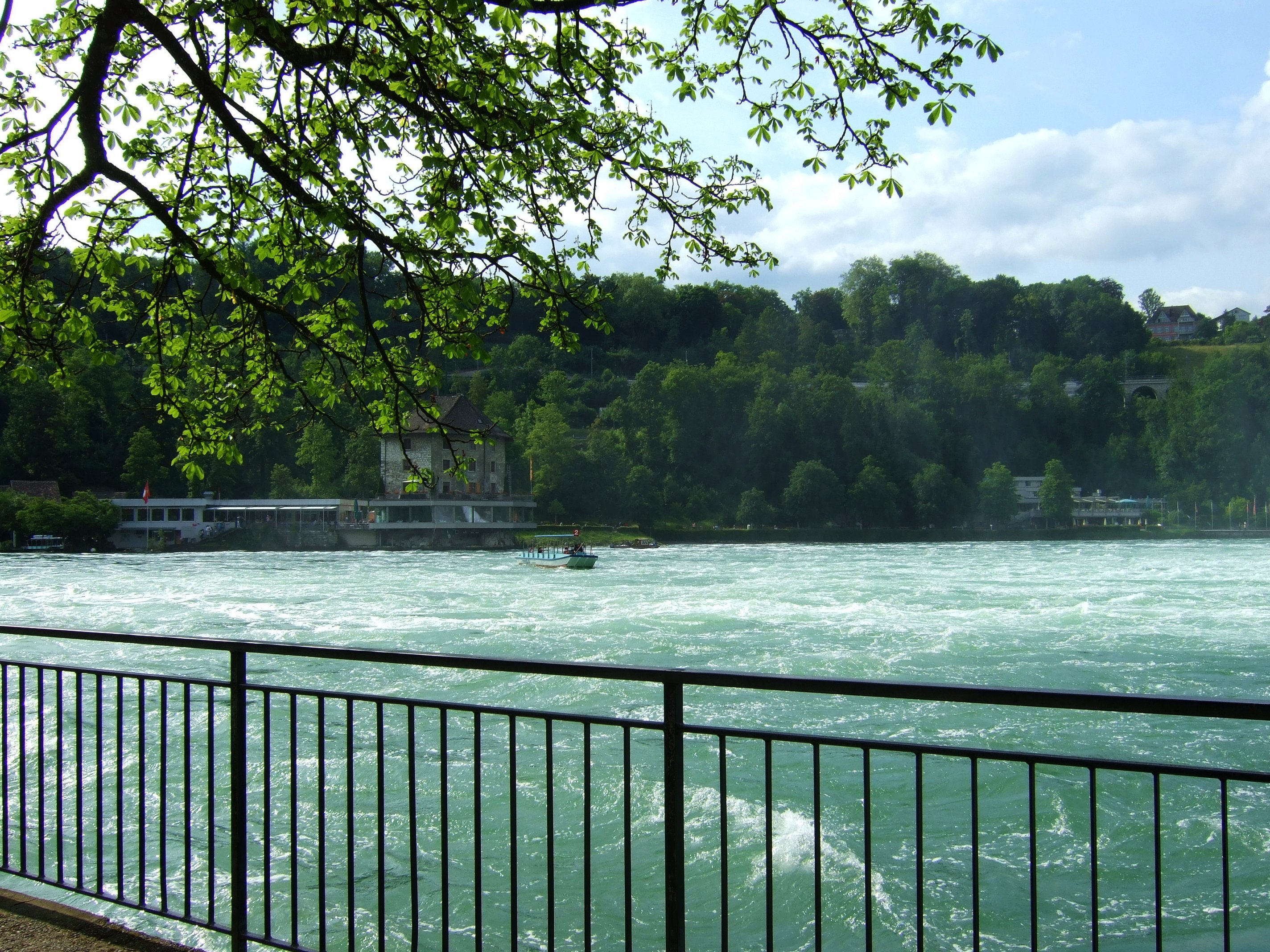 Ein Stück unterhalb vom Rheinfall.
