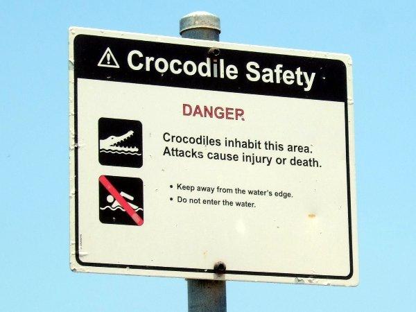 An der Küste (Cox Peninsula am Ende der Strasse) gibt's offensichtlich Krokodile.