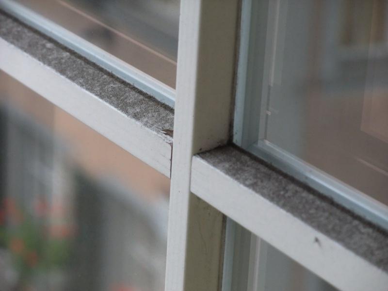 Fenster vorher