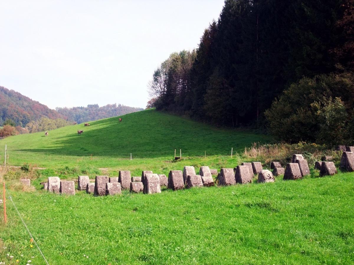 Eine Tanksperre an der Kantonsgrenze Zürich-Thurgau.