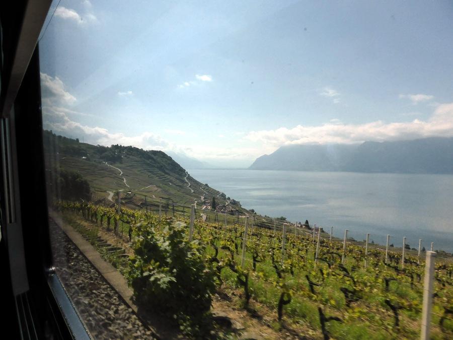 Der Genfersee bei der Anfahrt auf Lausanne, Richtung Osten (Rhonedelta).